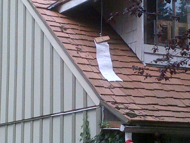 Strap with shred of tarp still attached to neighbours house. This would have taken significant force to achieve.