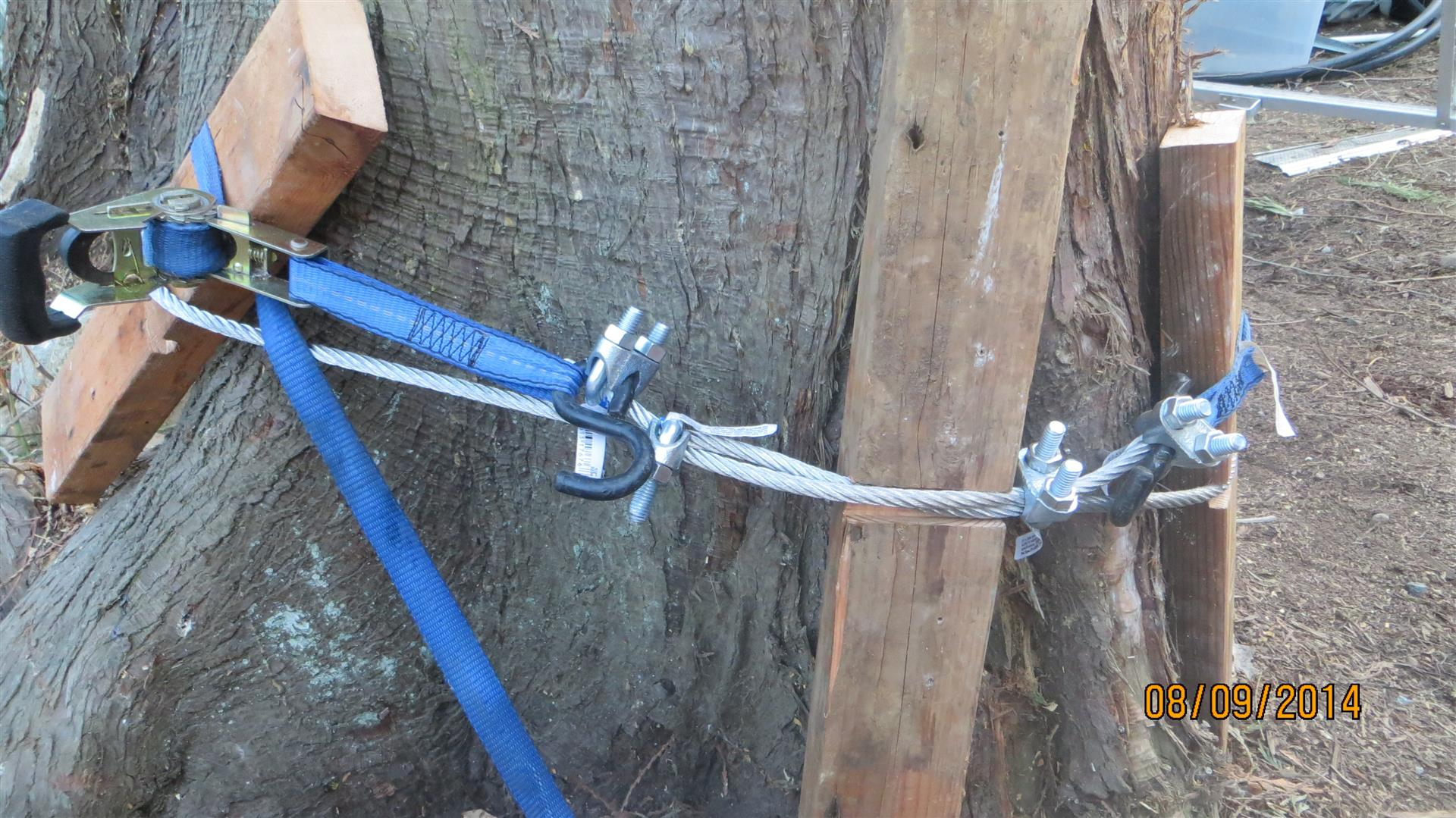 I then used a ratchet strap clamped to each side of the loop to tighten the cable around the tree before installing the double cable clamps