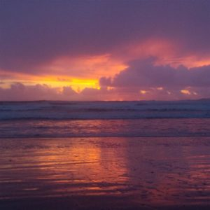 The one and only sun sighting at Tofino was the night before we left.